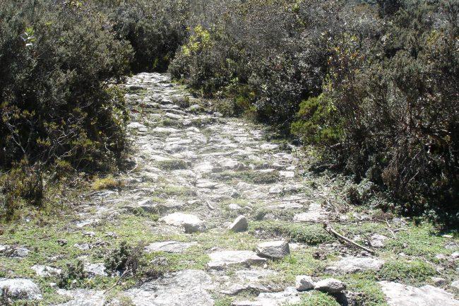 Expedición Andina